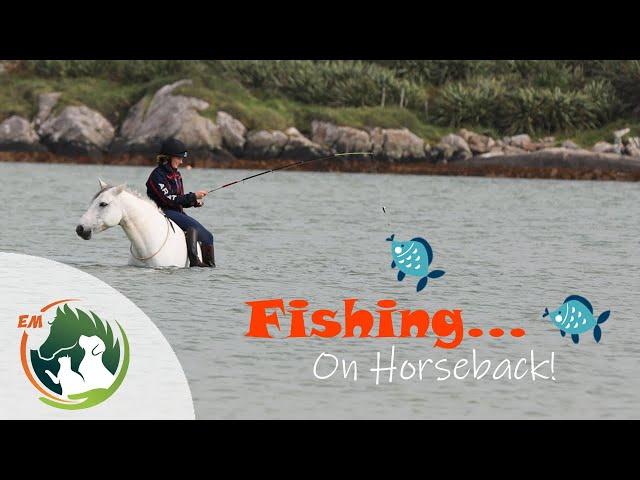 FISHING on Horseback | Pony Beach Adventure | Ireland 🇮🇪