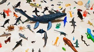 쥬라기월드 대왕 모사사우루스 과연 잡을수 있을까? 장난감 낚시놀이Jurassic World Mosasaurus Toy Fishing