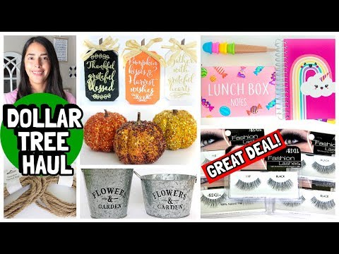 DOLLAR TREE HAUL NEW FINDS JULY 2019