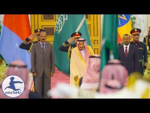 Ethiopia, Eritrea Sign Peace Deal in Saudi Arabia Djibouti to Follow thumbnail