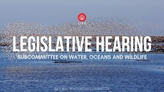 Water, Oceans and Wildlife Subcommittee Hearing