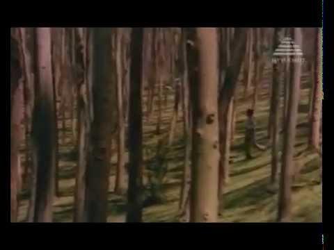 Moondram Pirai - BGM - Raja.mp4