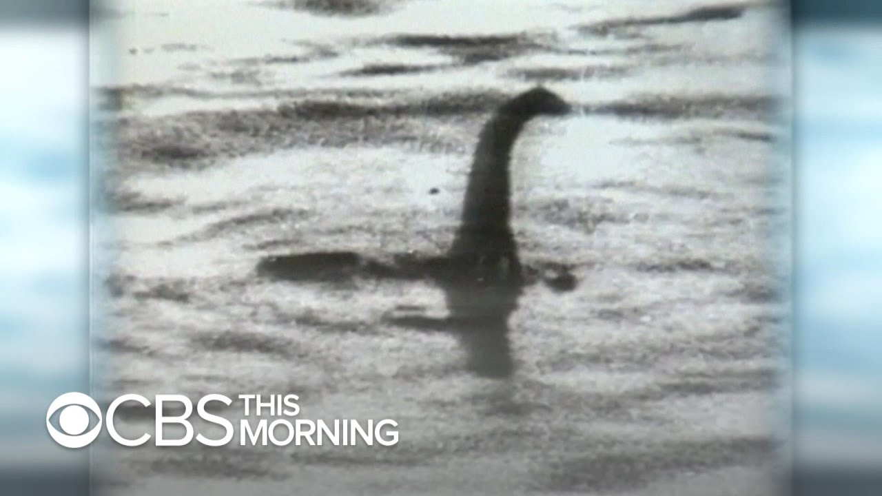 Using DNA to track down the Loch Ness monster