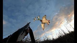 Фото ÖRDEK AV    S K SAZL KLAR N İÇİNDE SABAH BEKİ MALLARD DUCK HUNTİNG охота на утку