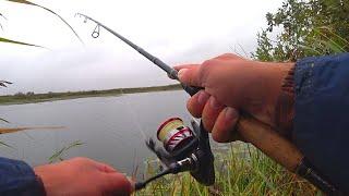 Рыбалка на СПИННИНГ с берега ! Ловля щуки на спиннинг в сентябре! Спиннинг 2021!