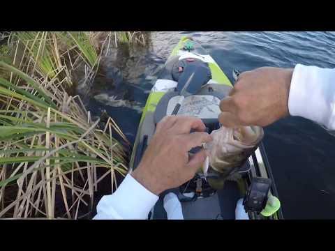 Kayak Fishing Everglades National Park