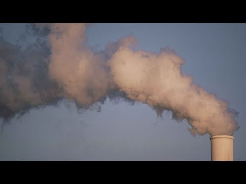 Air Pollution: Its Impact on Health and Possible Solutions - Professor Chris Whitty