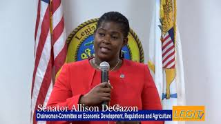 A Word with DeGazon: Storm Water Management and Well Drilling