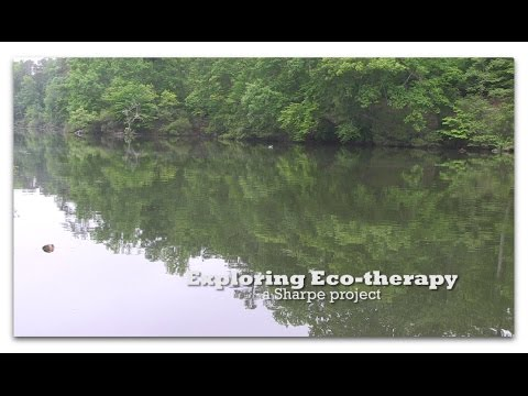Exploring eco-therapy: A Sharpe project