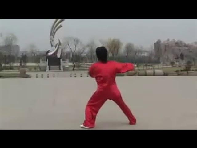 Chen Shu Li - Tai Chi style Chen Xiaojia Erlu
