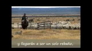 Un solo rebaño, un solo pastor (Juan 10:16)