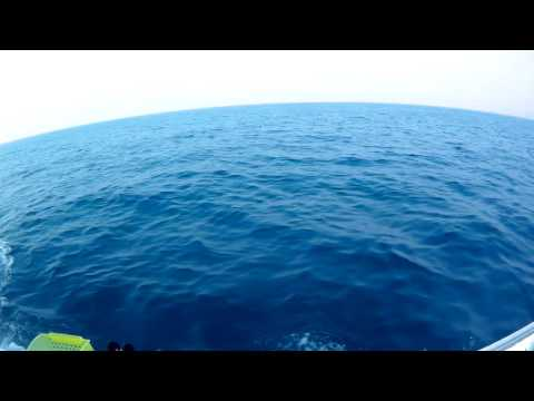 Hong Kong Offshore Fishing - start journey (1/10) ボート釣り