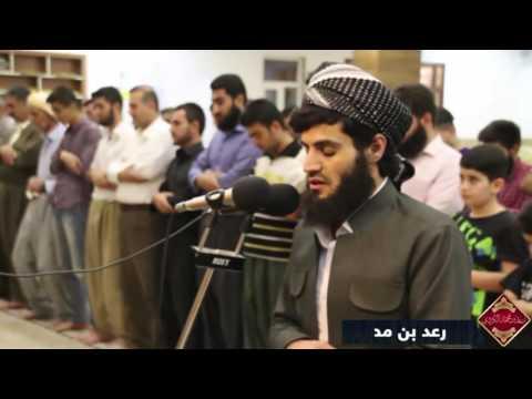Раыд Мухаммад Курди - чтение из суры ( Аль - Мульк - الملك )