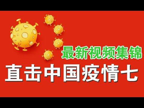 宝胜视频:直击中国疫情七:最新视频集锦
