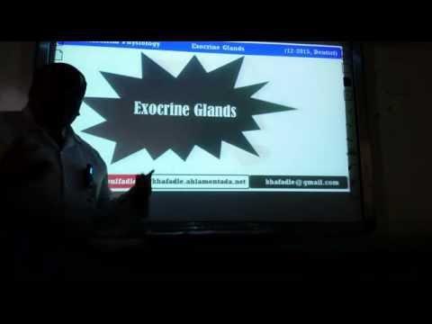 Exocrine glands Part-I (12-2015, Dentist) by Dr Khaled A Abulfadle