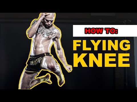 """All """"Flying Knee"""" Finishes In UFC"""