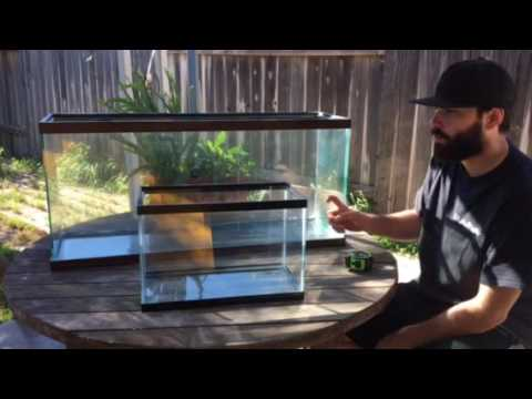 How to tell how many gallons a fish tank is youtube for 20 gallon fish tank dimensions