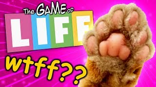 Cat With 6 Toes | The Game Of Life w/Bouphe #3