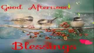 Sweet Good Afternoon Video For Lovely Sister  Best Wishes   Whatsaap   Video  E cards   E quotes