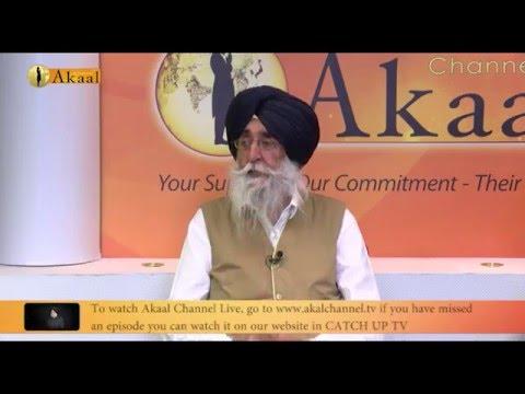 Simranjit Singh Mann Uk tour 2016   a Talk with Mr  Mann and Shromoni Akaali Dal Amritsar UK Members