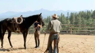 How to Use Spurs on Your Horse with Pat Parelli