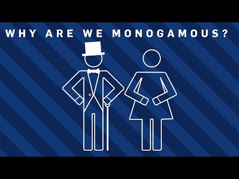are we meant to be monogamous We often think of cheating as the real cause of relationships falling apart, but is monogamy natural anyway it seems that both men and women.