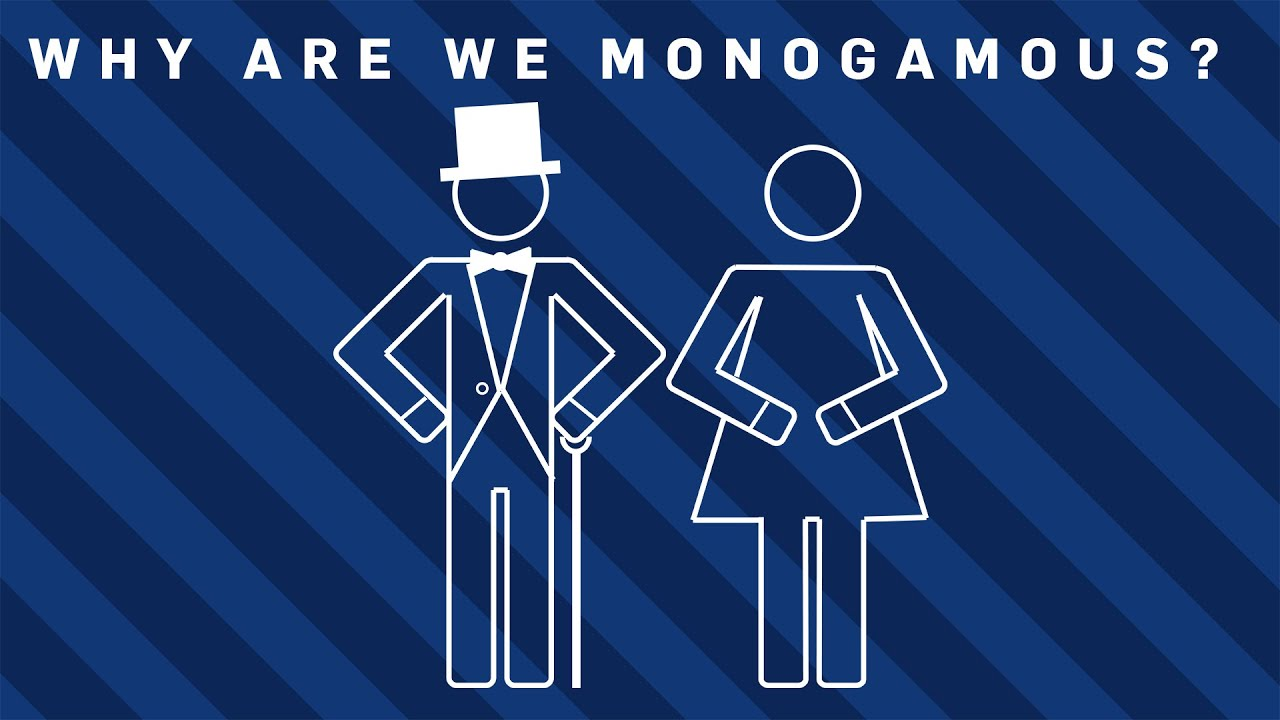 are we meant to be monogamous There are, however, no studies that truly prove that we as mammals are naturally monogamous or non-monogamous we can look at our history as primates either way to justify our behavior.