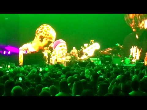 """Red Hot Chili Peppers """"Soul to Squeeze"""" Live in Grand Rapids 6/25/17"""