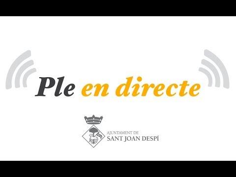 Ple Ajuntament Sant Joan Despí - Gener 2018