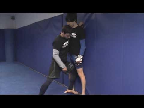 Techniky MMA - 1. díl