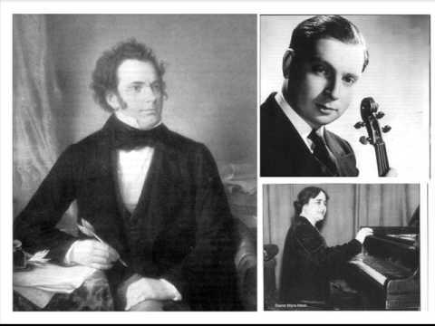 Schubert-Violin Sonatina No. 1 in D Major Op. 137  (Complete)