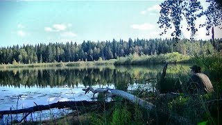 Рыбалка на озере Поплавочная удочка кружки 190