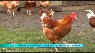 19/11/2014 Recette de saison : poule à la crème normande