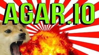 WOW DOGE PLAYS AGAR.IO (AGARIO DOGE MEME)