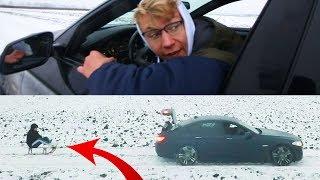 50km/H Met De Slee Achter Mijn Auto! Vlog #1
