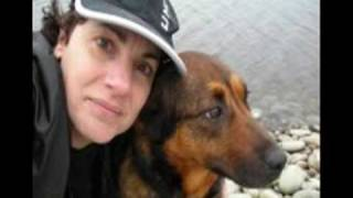 Stop Brindi From Being Unjustly Euthanized In Halifax, Nova Scotia Canada