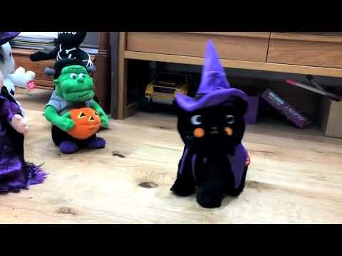 Singing Halloween Toy Cat