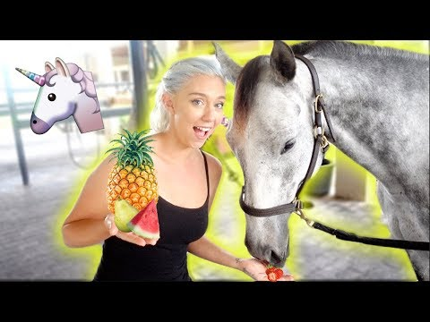 WILL SHE EAT IT? MY HORSE TRIES FRUITS AND VEGGIES! | NICOLE SKYES
