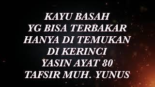 ( TRAVEL ) KAYU SIGI BASAH YG BISA TERBAKAR HANYA DI KERINCI ADA DI SURAT YASIN 80 BANGGA INDONESIA