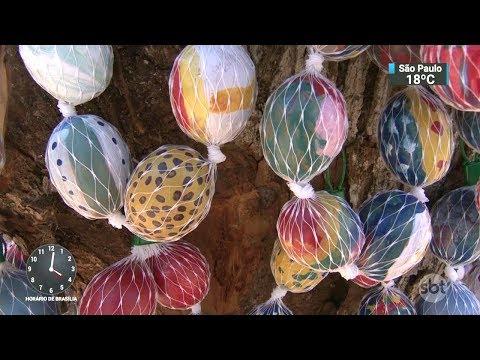 Cidade enfeita árvore com mais de cem mil ovos para a Páscoa   SBT Notícias (24/02/18)