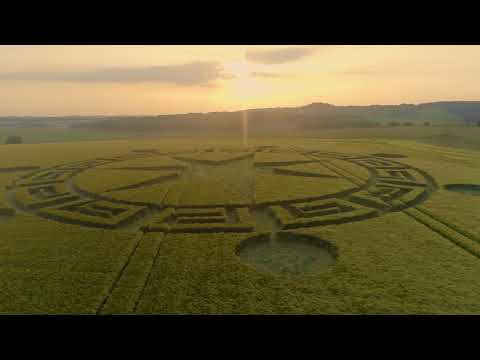 nouvel ordre mondial | CROP CIRCLE in Sixpenny Handley, UK - July 12, 2018