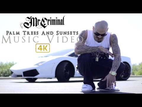 Mr. Criminal - Palm Trees And Sunsets (Official Music Video) 2017!