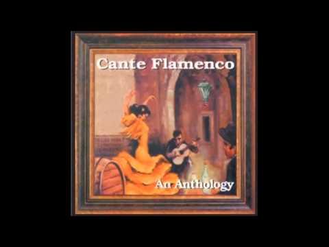 La Mia Compañera - Cante Flamenco