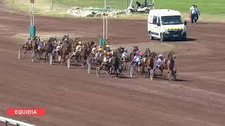 Vidéo de la course PMU PRIX DE LEVIE