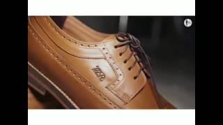 Freskho Longwing Shoes