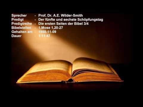 Die ersten Seiten der Bibel 3/4 - Der fünfte und sechste Schöpfungstag