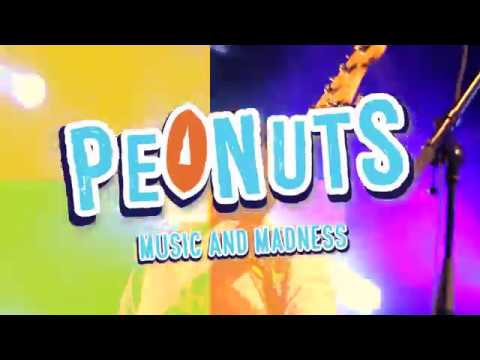 Peanuts band promo 2017 - Music and Madness