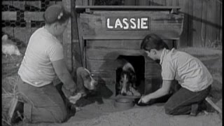 Lassie - Episode #93 - The Dog House -  Season 3, Ep. 28 -  03/17/1957