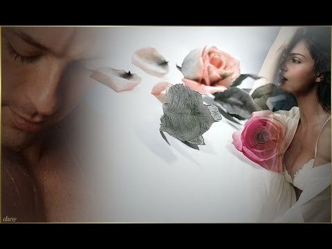Роза На Снегу, Красивая #Песня о Любви, Любовь Попова