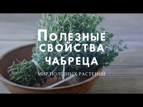 КОДЕЛАК БРОНХО с ЧАБРЕЦОМ - инструкция по применению